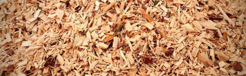 What is Your Choice of the Smoking Wood: Wood Dust or Wood Chips?